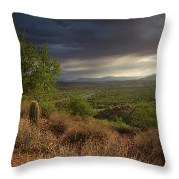 A New Beginning Throw Pillow by Sue Cullumber
