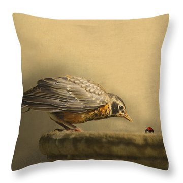 Robin Throw Pillows