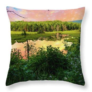 A New England Bog. Throw Pillow