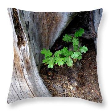 A New Start Throw Pillow