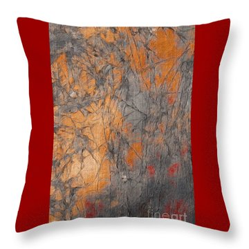 A New Vision Throw Pillow by William Wyckoff