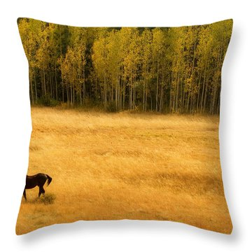 A Nice Autumn Day Throw Pillow by James BO  Insogna