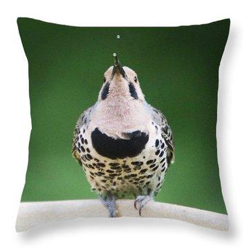Ornithology Throw Pillows