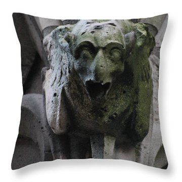 Throw Pillow featuring the photograph A Notre Dame Griffon by Christopher Kirby