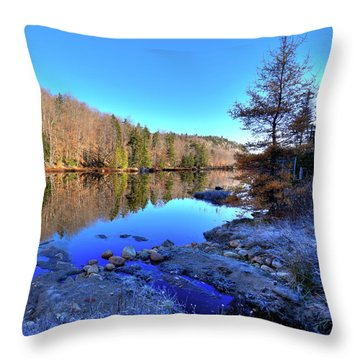 Throw Pillow featuring the photograph A November Morning On The Pond by David Patterson