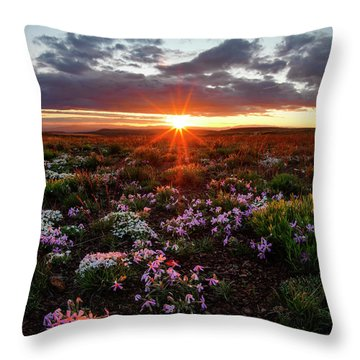 A Nuttalls Linanthastrum Morning Throw Pillow by Leland D Howard