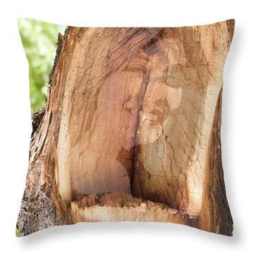 A Nymph In Every Tree Throw Pillow