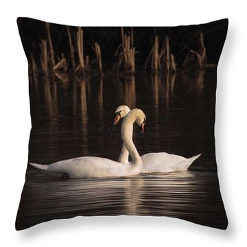 A Painting Of A Pair Of Mute Swans Throw Pillow by John Edwards