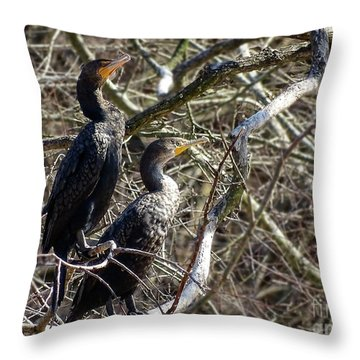 A Pair Of Cormorants Throw Pillow by Melissa Messick
