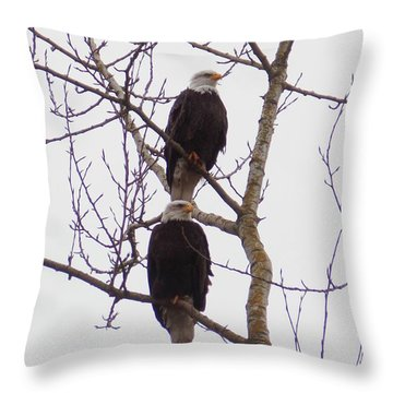 A Pair Of Eagles Throw Pillow by Karen Molenaar Terrell