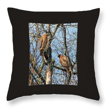 A Pair Of Hawks Throw Pillow