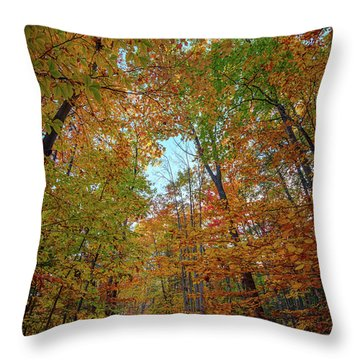 A Path Diverged In The Woods Throw Pillow