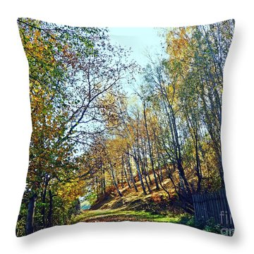 A Path In The Autumn Throw Pillow