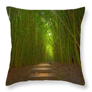 A Path Less Traveled Throw Pillow
