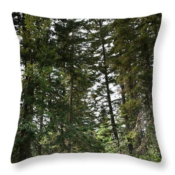 A Path Through The Trees Throw Pillow
