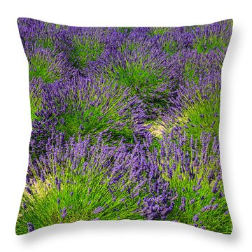 A Pattern Of Lavender Throw Pillow