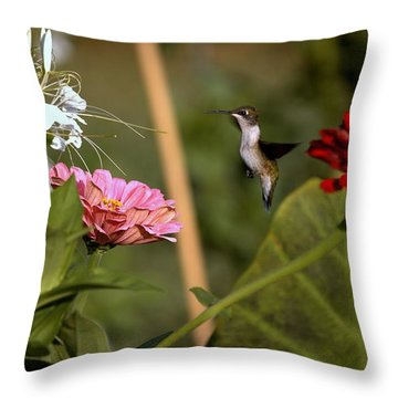 A Pause Throw Pillow