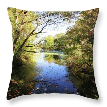 A Peaceful Afternoon Throw Pillow