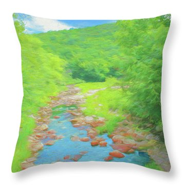 A Peaceful Summer Day In Southern Vermont. Throw Pillow