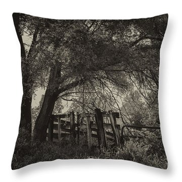A Peacful Place Throw Pillow