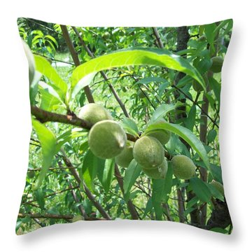 A Peachy Start Throw Pillow by Robin Coaker
