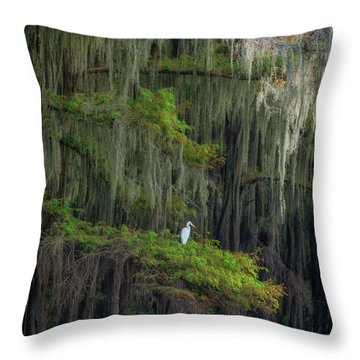 A Perch With A View Throw Pillow