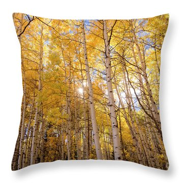 Throw Pillow featuring the photograph A Perfect Day Begins by The Forests Edge Photography - Diane Sandoval