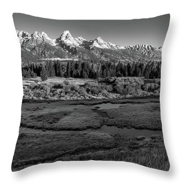 A Perfect Frosty Morning In Grey Scale Throw Pillow