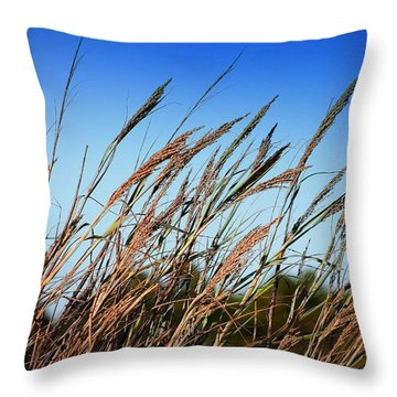 A Picture Worth A Thousand Words Throw Pillow by Debra Forand