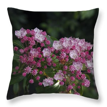 A Pink Bunch Throw Pillow