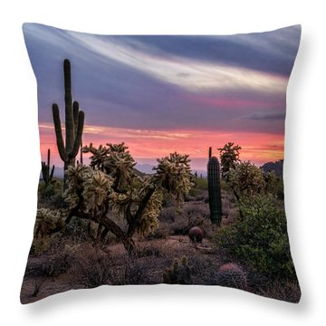Throw Pillow featuring the photograph A Pink Kissed Desert Sunset  by Saija Lehtonen