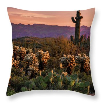 Throw Pillow featuring the photograph A Pink Kissed Sunset  by Saija Lehtonen