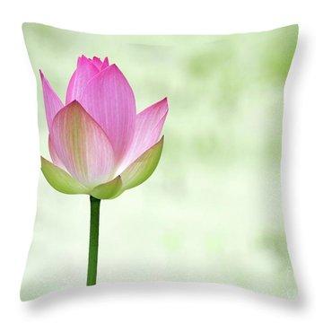A Pink Lotus Throw Pillow by Sabrina L Ryan