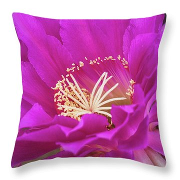 Throw Pillow featuring the photograph A Pink Punch  by Saija Lehtonen