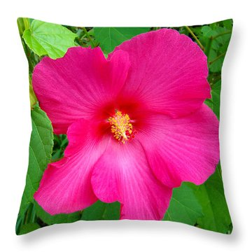 Throw Pillow featuring the photograph A Pink That Pops by Sue Melvin