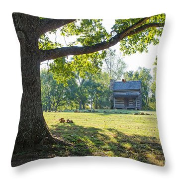 A Pioneer's Stake Throw Pillow