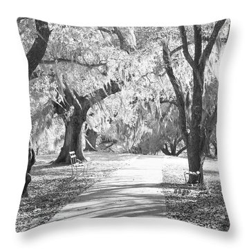 A Place For Contemplation Ir Throw Pillow by Suzanne Gaff