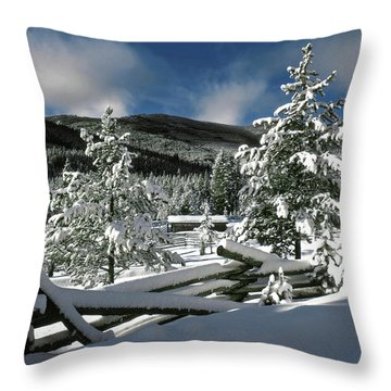 A Place In The Winter Sun Throw Pillow