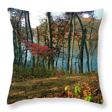 A Place To Think Throw Pillow