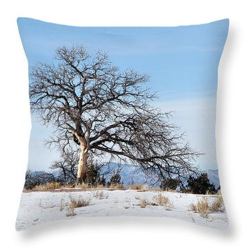 A Placid Winter Scene Throw Pillow