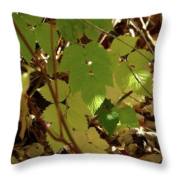 A Plant's Various Colors Of Fall Throw Pillow by DeeLon Merritt