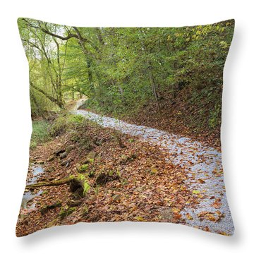 Throw Pillow featuring the photograph A Pleasant Walk by John M Bailey