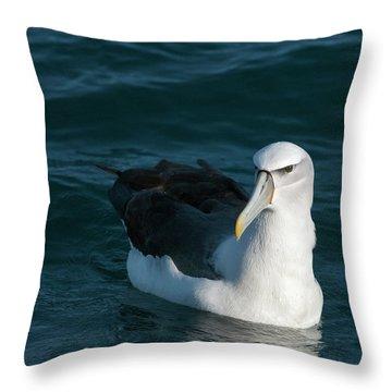 A Portrait Of An Albatross Throw Pillow