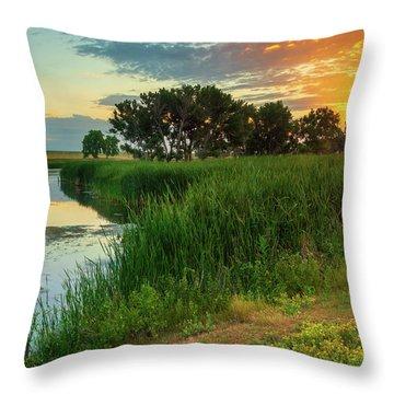 A Portrait Of Summer Throw Pillow