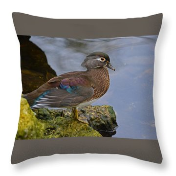 A Pretty Female Painted Wood Duck Throw Pillow by Judy Wanamaker