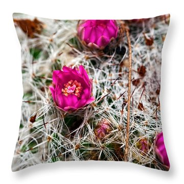 A Prickly Bed Throw Pillow by Christopher Holmes