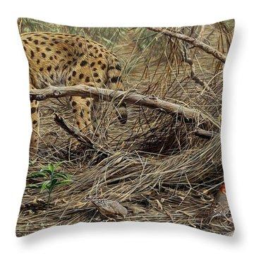 A Quiet Approach Throw Pillow