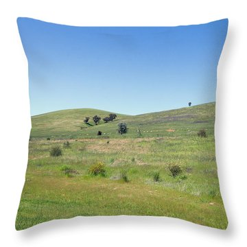 Throw Pillow featuring the photograph A Quiet Interlude by Linda Lees