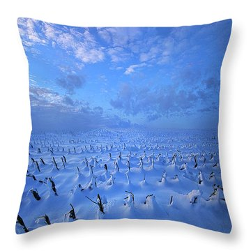 Throw Pillow featuring the photograph A Quiet Light Purely Seen by Phil Koch