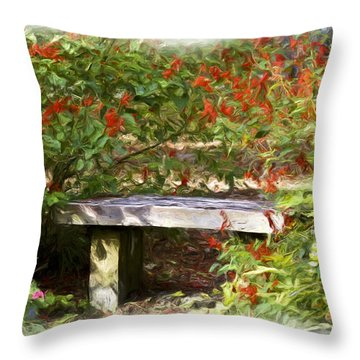 A Quiet Place Throw Pillow by Carolyn Marshall